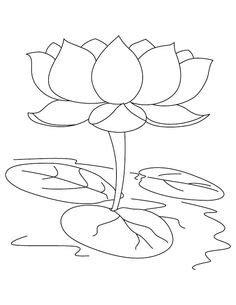 Floating lotus flower coloring pages - ColoringStar   zen journal   Printable flower coloring