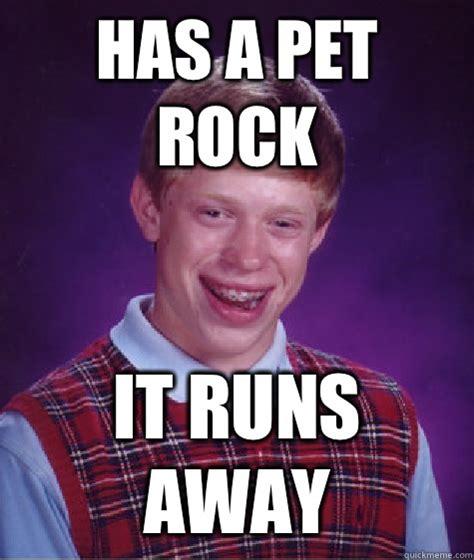 Pet Rock Meme - pet rock meme 28 images gets a pet rock it runs away