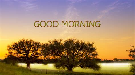 Best Good Morning Hd Wallpapers  Hd Wallpapers Images