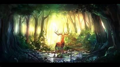 Forest Deer Nature Animals Fantasy Computer Desktop