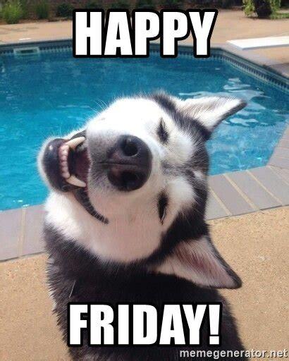 Happy Friday Memes - 20 husky memes you ll find too cute sayingimages com