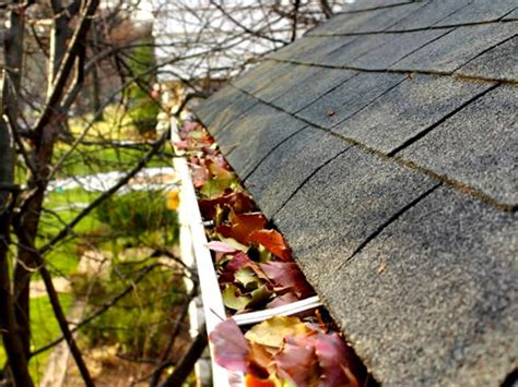 Rain Gutter Cleaning  Dallas  Fort Worth Texas