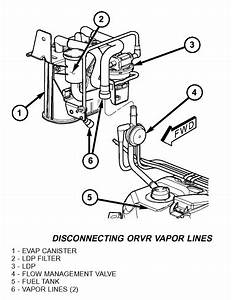 2004 Jeep Grand Cherokee Evap System Diagram