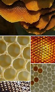 Found Patterns: Honeycomb – Pattern Observer  Honeycomb