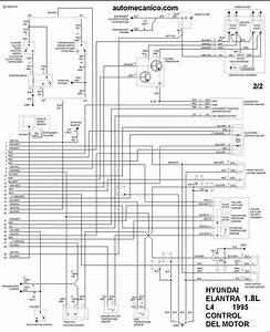 2001 Hyundai Accent Fuel Pump Wiring Diagram