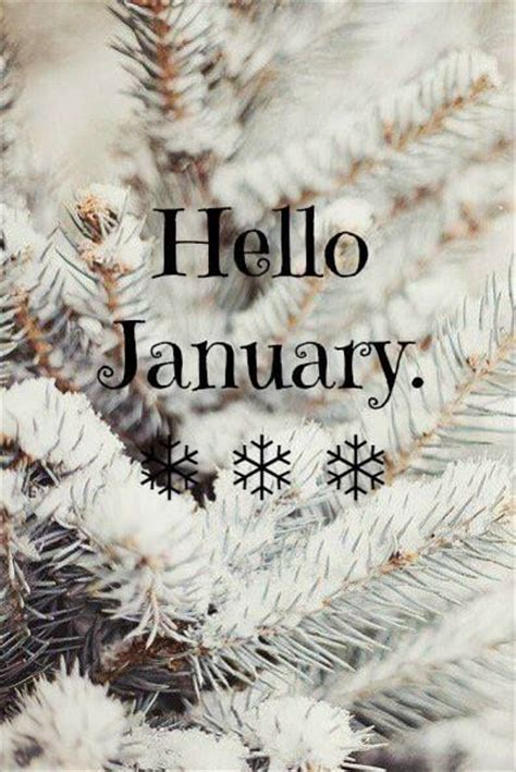 january pictures   images  facebook