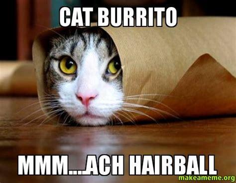 Burrito Meme - the gallery for gt burrito meme