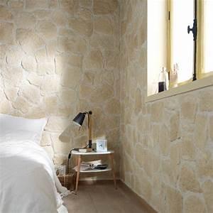 Mur En Pierre Interieur Moderne : plaquette de parement mur mur castorama 26 40 pierres en 2019 d coration maison ~ Melissatoandfro.com Idées de Décoration