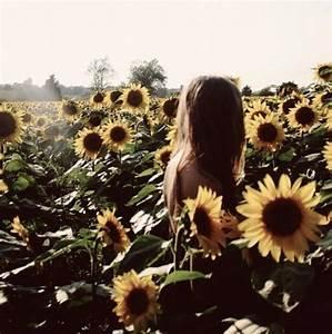indie sunflower | Tumblr