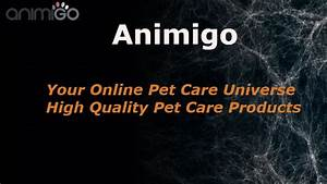 Animigo Review  U0026 Results - Top Pet Care Products     Truth Revealed
