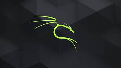 Linux Kali Wallpapers Github Backgrounds Master Offsec
