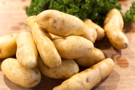 cuisiner la ratte foodblog paules ki t chen