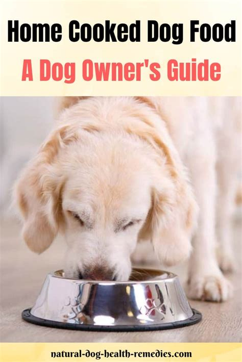 home cooked dog food  dog owners guide