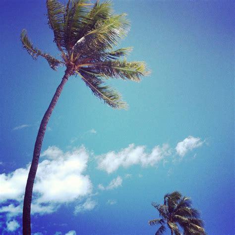 insta hawaii  beautiful mess