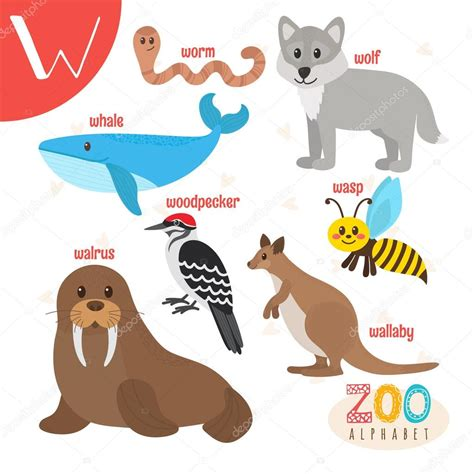 12268 clipart library comjob clipart free clip free clip 600 x 600 277k jpg animals choice image wallpaper and free