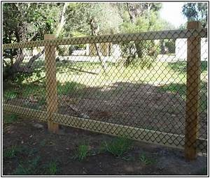 Fence ideas for dogs inexpensive fencing ideas new home for Dog fence for sale cheap