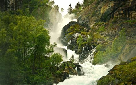 nature landscape waterfall trees rock amazon