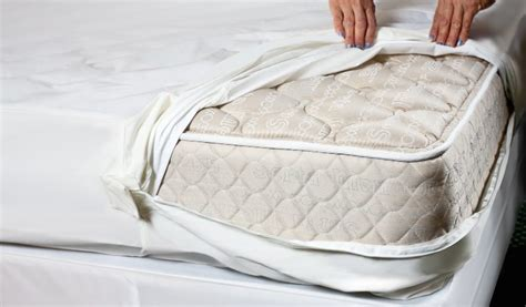 what to do with an mattress how to get rid of bed bugs in a mattress in 3 easy steps