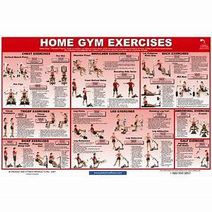 Home Gym Exercise Chart Gym Workout Chart Home Gym