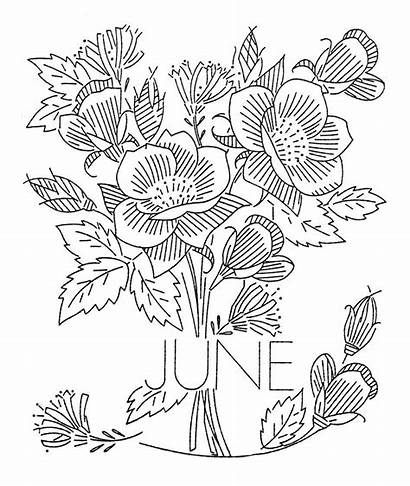 Embroidery Flower Month Flowers June Designs Patterns