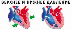 Реферат на тему артериальная гипертензия лечение