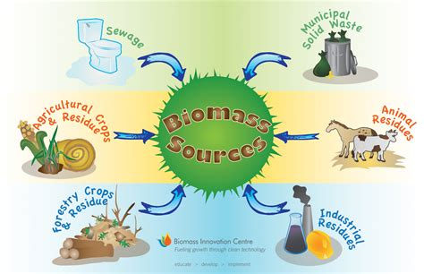 Is Biomass A Green Energy Source