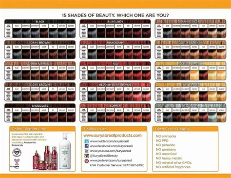 Pravana Chromasilk Hair Color Chart