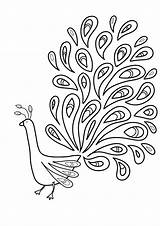 Coloring Feather Pages Bird Printable Print Getcolorings Pag sketch template