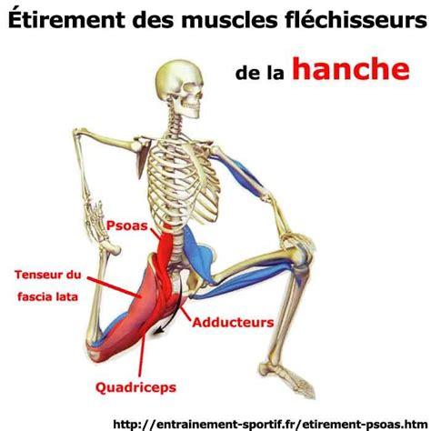 10 id 233 es 224 propos de fl 233 chisseurs de la hanche sur exercices de fl 233 chisseurs de la