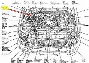 Enotecaombrerosseit2005 Ford Expedition Engine Diagram Softballfielddiagram Enotecaombrerosse It