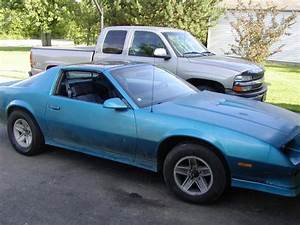Np99camaroz28 1984 Chevrolet Camaro Specs  Photos  Modification Info At Cardomain