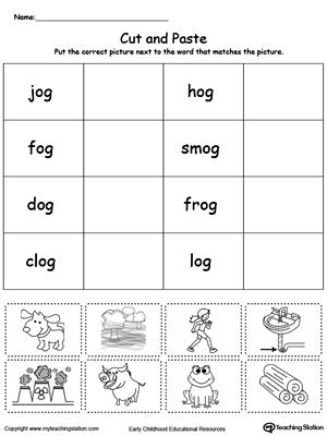 early childhood sorting  categorizing worksheets