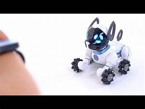 search q=hey chip the obe nt robot dog