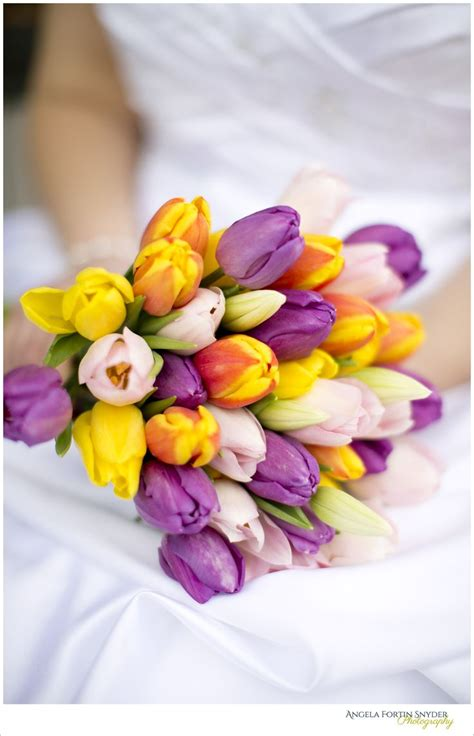 31 Best Images About Purple And Yellow Flowers On