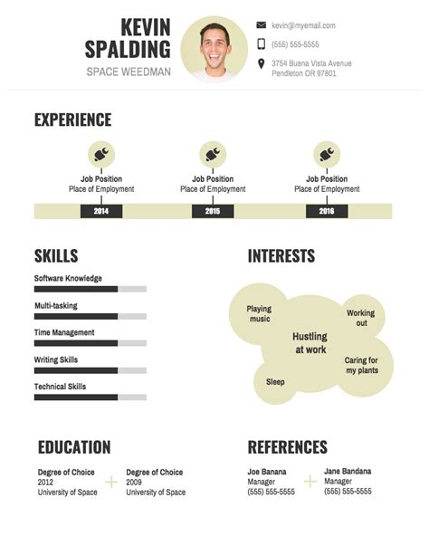 Cv Infography Template by Infographic Resume Template Venngage