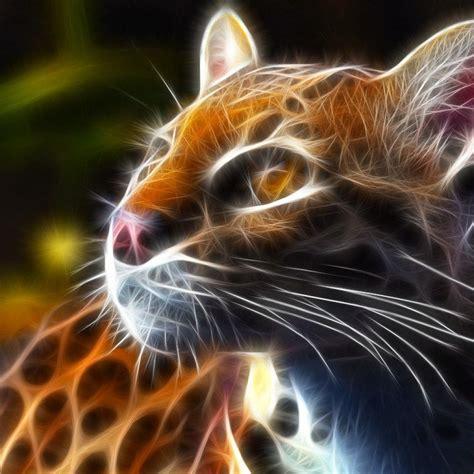 Fractal Animal Wallpaper - animal fractals fractal animal wallpaper pic 15