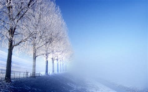 Free Winter Backgrounds by Hd Winter Wallpapers 19 Hdcoolwallpapers