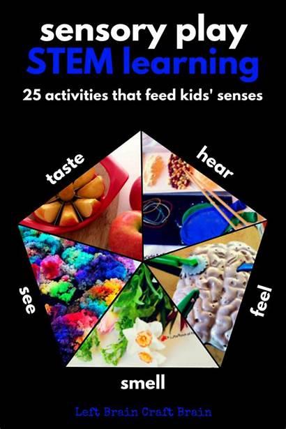 Senses Learning Stem Activities Sensory Preschool Play