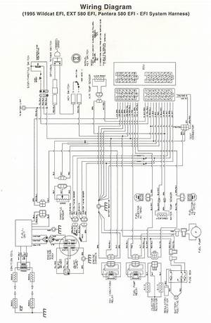 Yamaha 2008 Raptor 250 Wiring Diagram Winediagram Enotecaombrerosse It