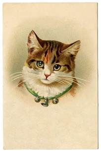 kitty cat pictures vintage pictures kitty cat with bells the