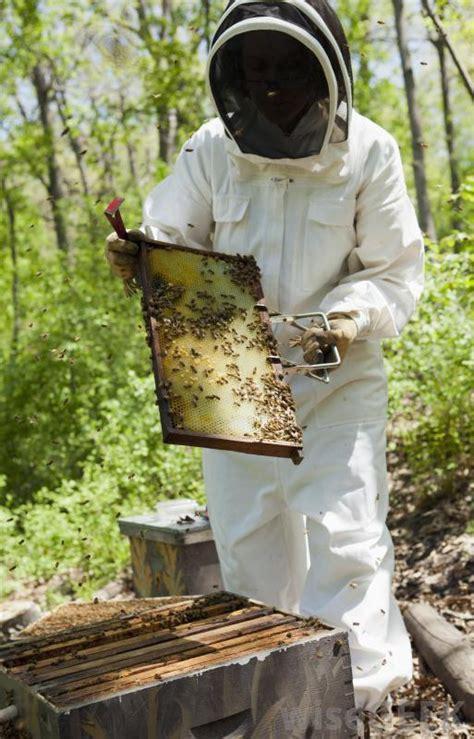 beekeeper   pictures