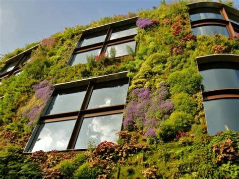 Pflanzen Vertikal Anbauen
