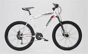 Rahmengeometrie Berechnen : tretwerk flex 2 0 26 zoll mountainbike wei 2016 mountainbikes ~ Themetempest.com Abrechnung