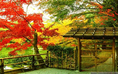 autumn  japan wallpapers seasonal crazy frankenstein