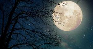 The Last Full Moon Of 2017 Is Going To Be A Supermoon ...