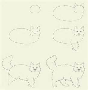 how to draw a cat step by step cats how to draw a cat how to draw