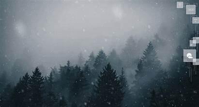 Forest Rain Snowy Phone Cpu Nature Pinosa