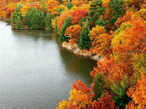 autumn   york  home state nature hd wallpaper