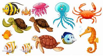 Sea Different Animals Kinds Vector Octopus Clipart