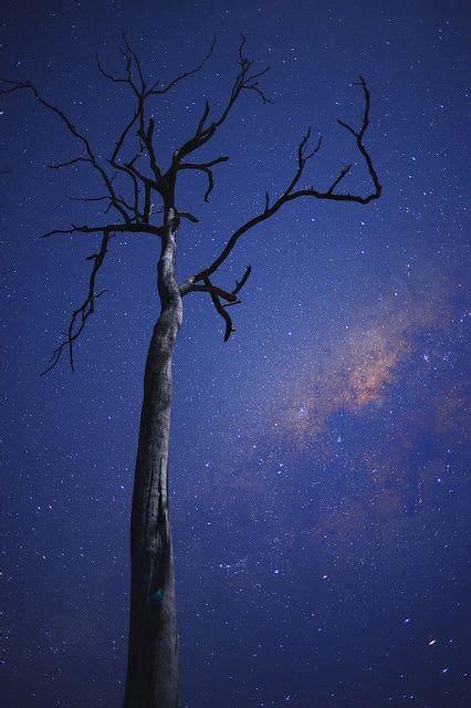 Milky Way Brisbane Australia Schmick